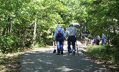 ElderlyS