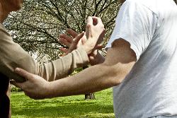 Push Hands 6b